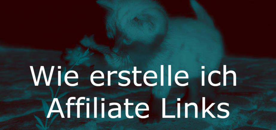 Wie erstelle ich Affiliate Links